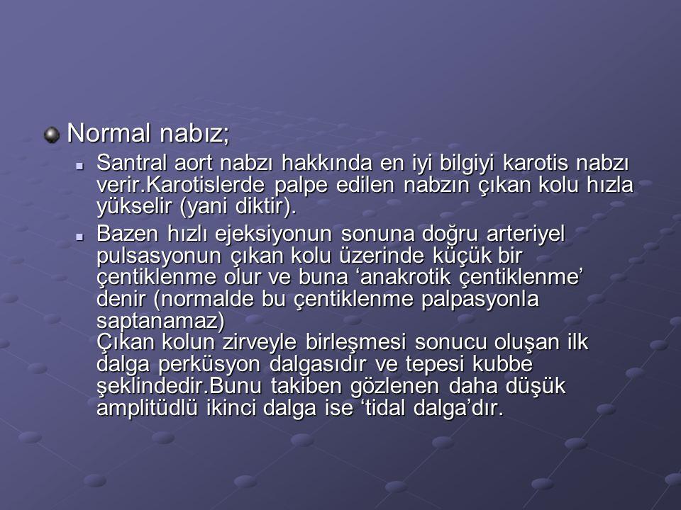 Normal nabız;
