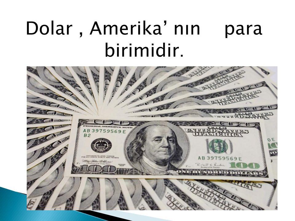 Dolar , Amerika' nın , para birimidir.