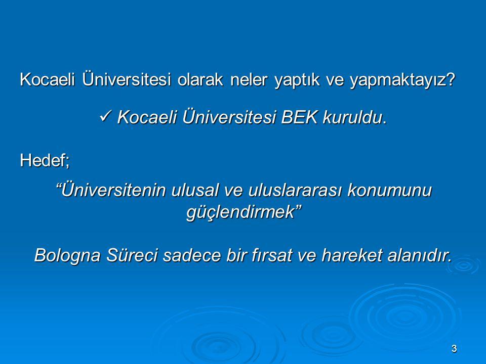 Üniversitenin ulusal ve uluslararası konumunu güçlendirmek