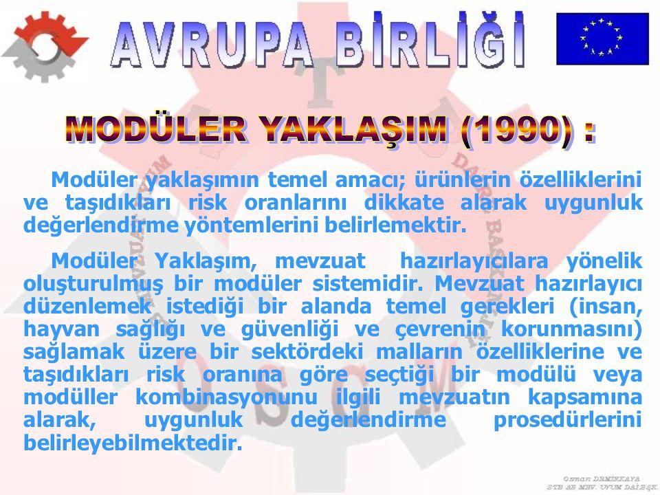 MODÜLER YAKLAŞIM (1990) :