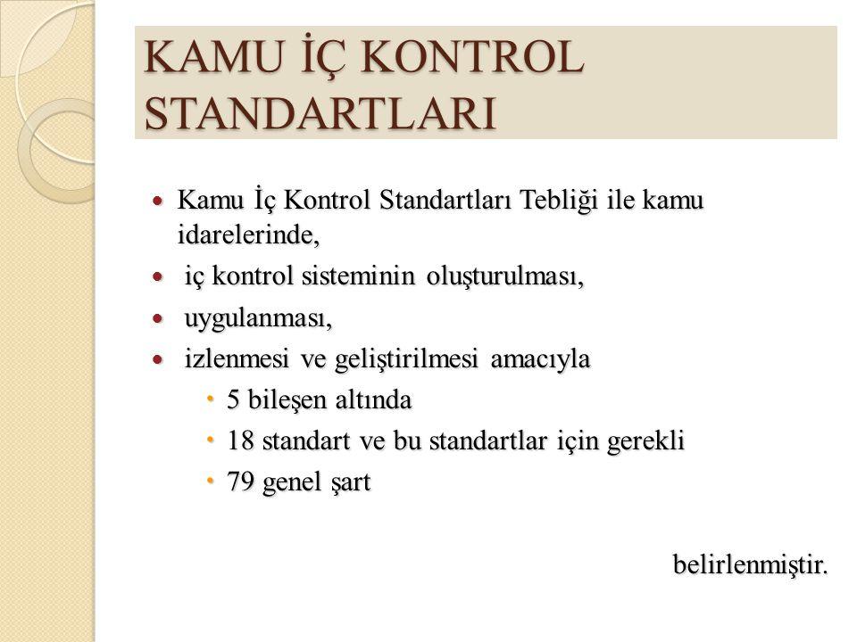 KAMU İÇ KONTROL STANDARTLARI