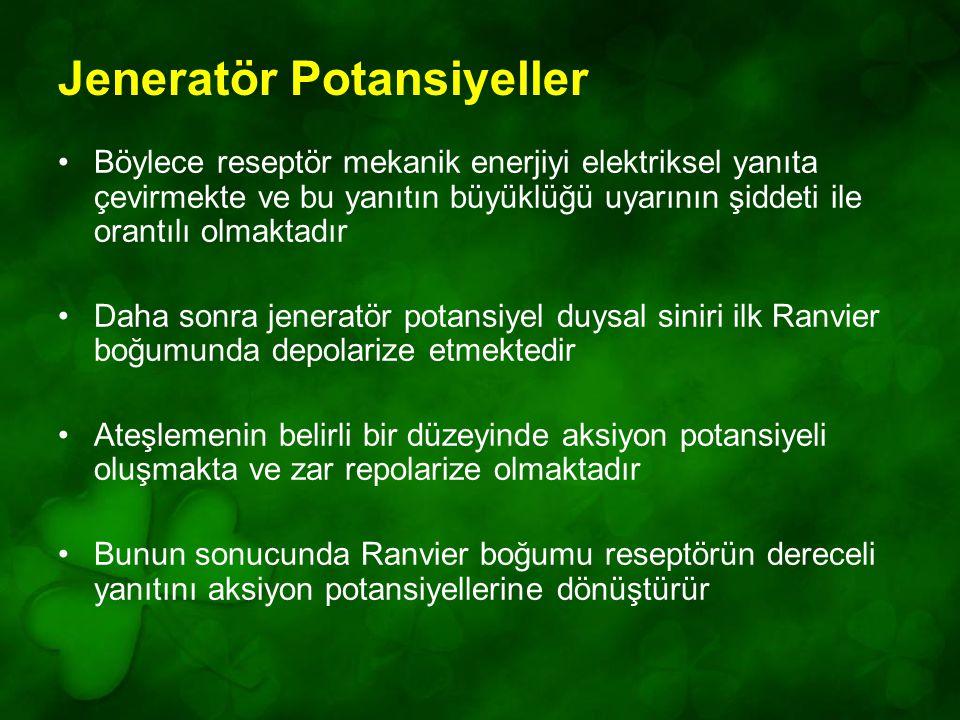 Jeneratör Potansiyeller
