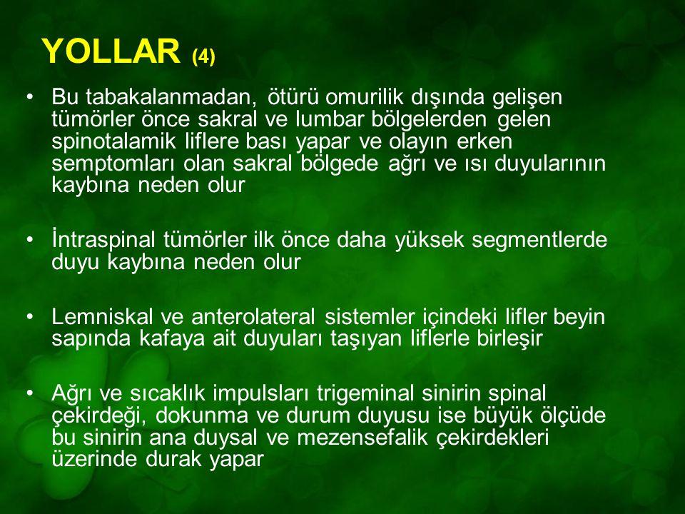 YOLLAR (4)