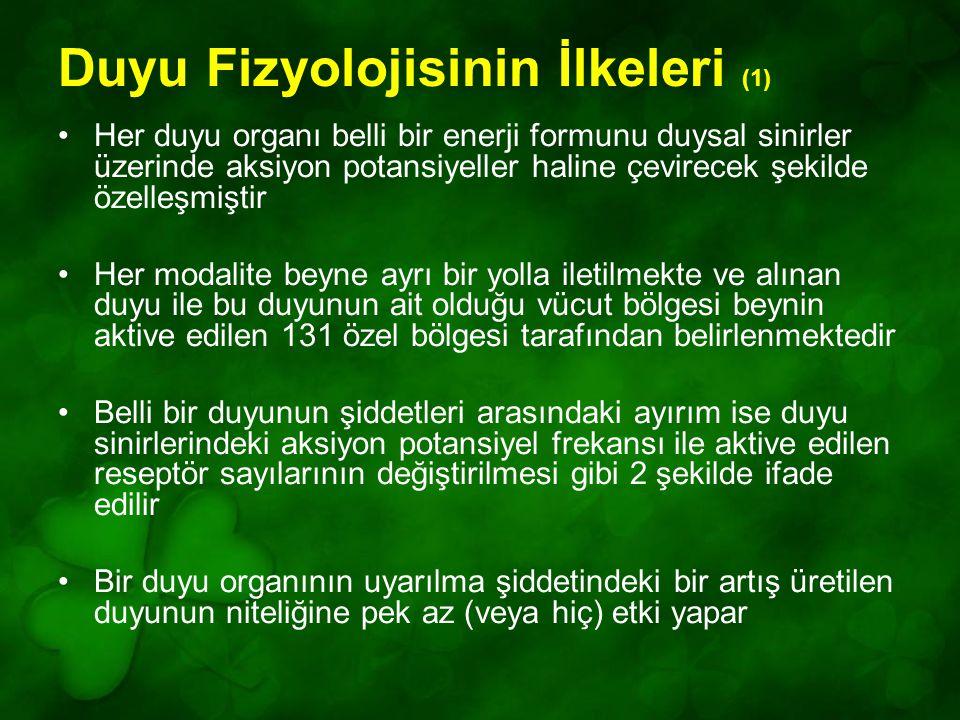 Duyu Fizyolojisinin İlkeleri (1)