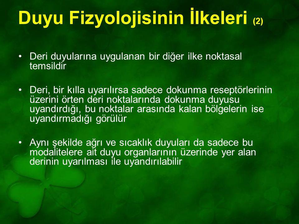Duyu Fizyolojisinin İlkeleri (2)