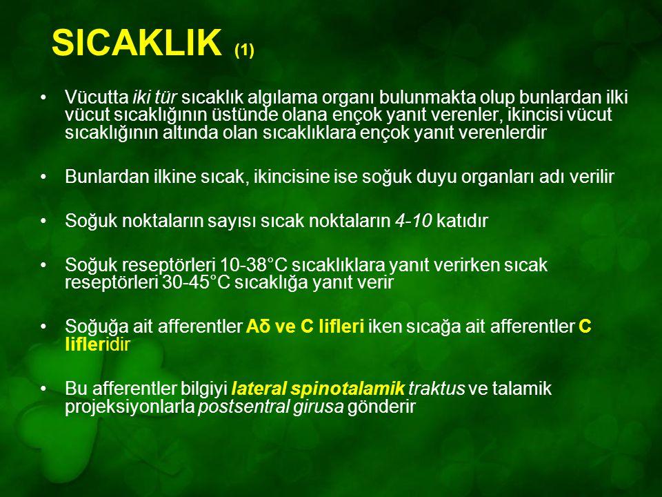 SICAKLIK (1)