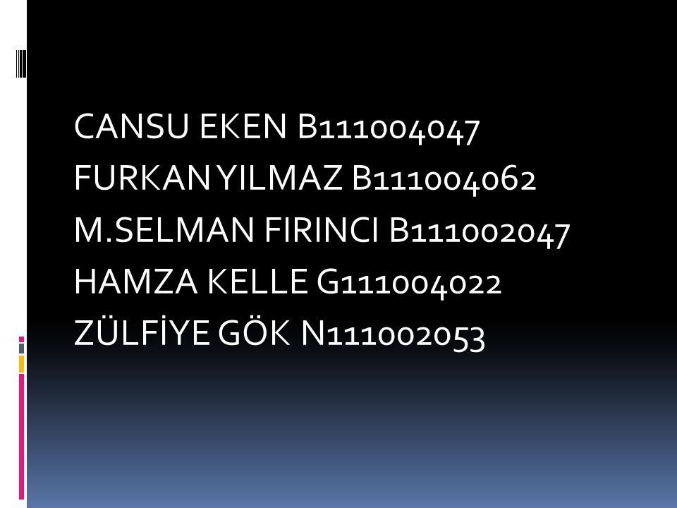 CANSU EKEN B111004047 FURKAN YILMAZ B111004062 M
