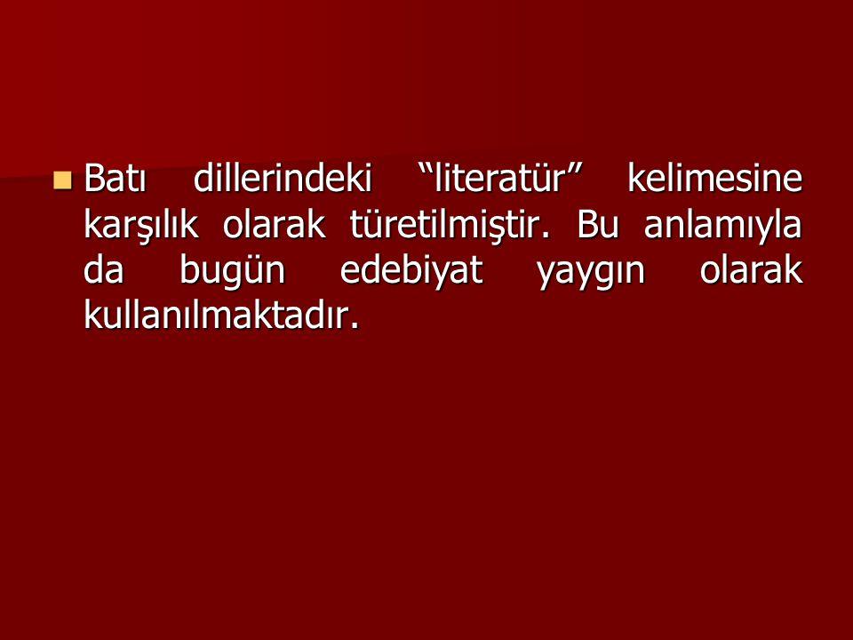 Batı dillerindeki literatür kelimesine karşılık olarak türetilmiştir