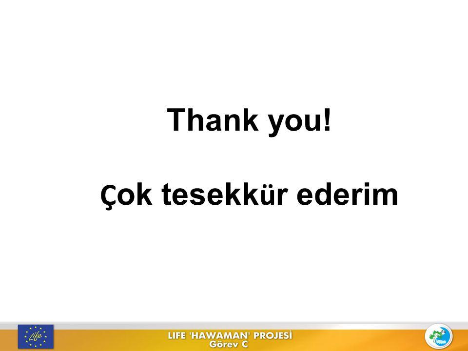 Thank you! Çok tesekkür ederim