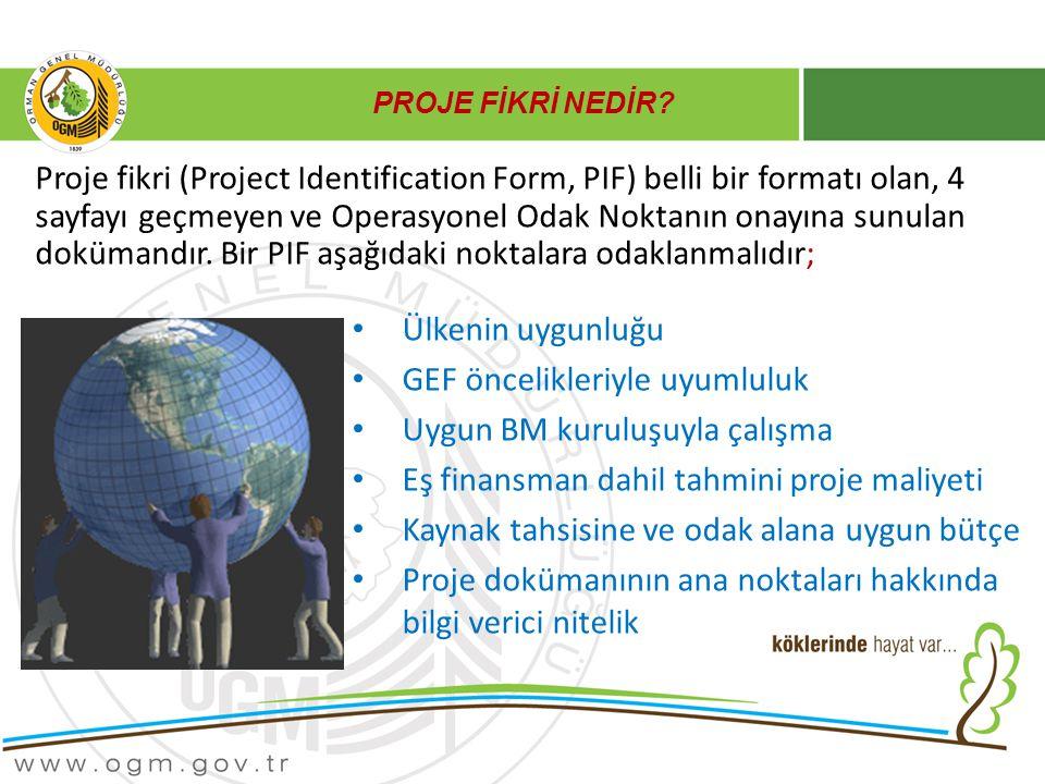 GEF öncelikleriyle uyumluluk Uygun BM kuruluşuyla çalışma