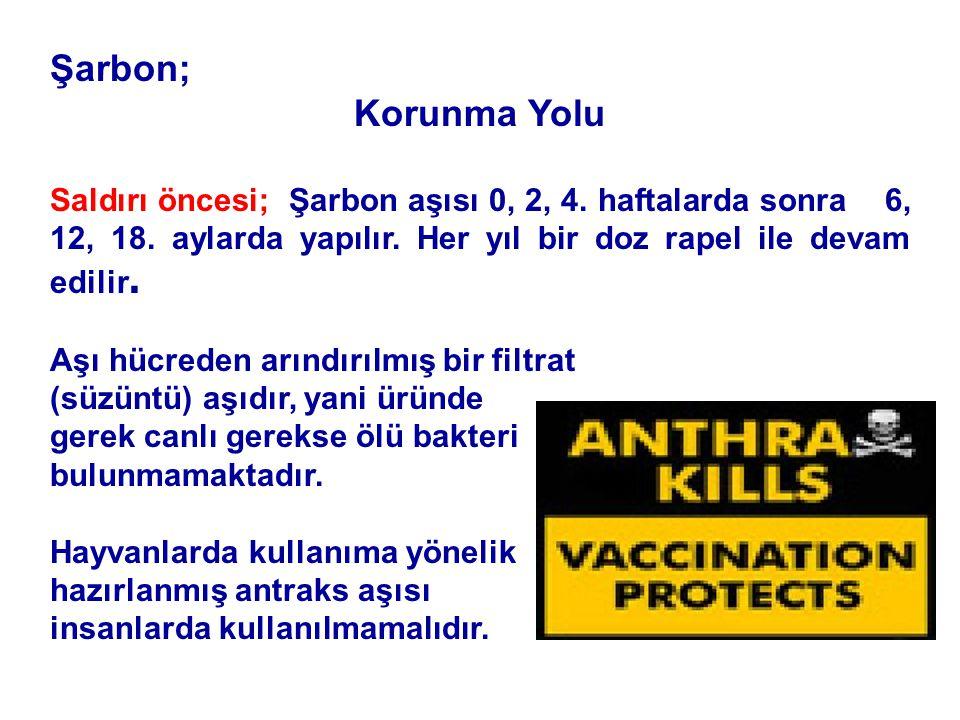 Şarbon; Korunma Yolu. Saldırı öncesi; Şarbon aşısı 0, 2, 4. haftalarda sonra 6, 12, 18. aylarda yapılır. Her yıl bir doz rapel ile devam edilir.