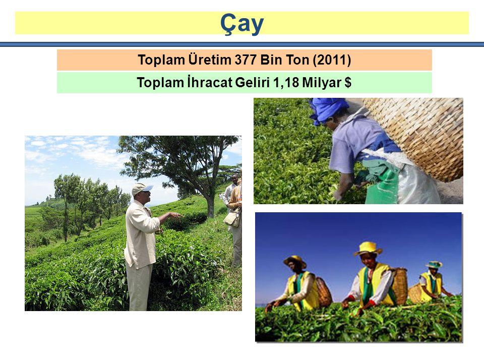 Toplam Üretim 377 Bin Ton (2011) Toplam İhracat Geliri 1,18 Milyar $