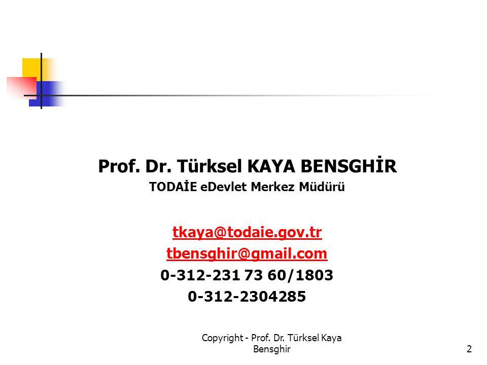 Prof. Dr. Türksel KAYA BENSGHİR TODAİE eDevlet Merkez Müdürü
