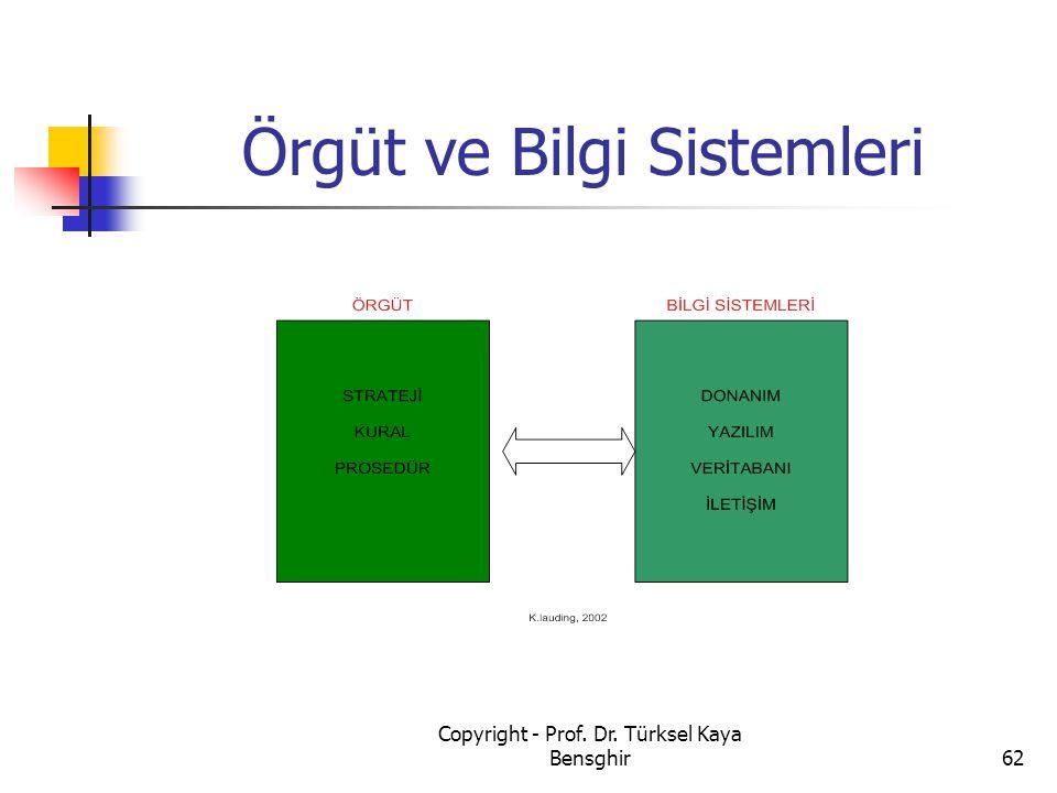 Örgüt ve Bilgi Sistemleri