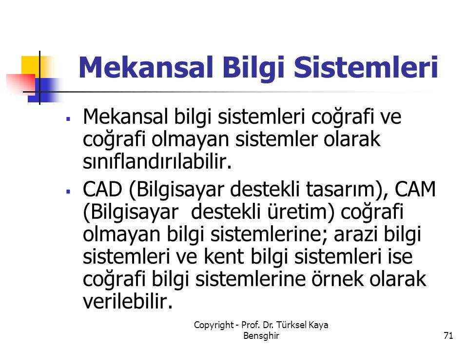 Mekansal Bilgi Sistemleri