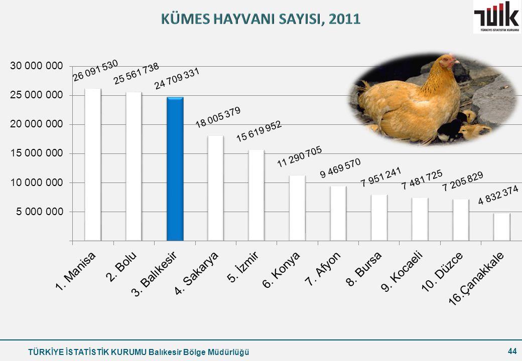 KÜMES HAYVANI SAYISI, 2011