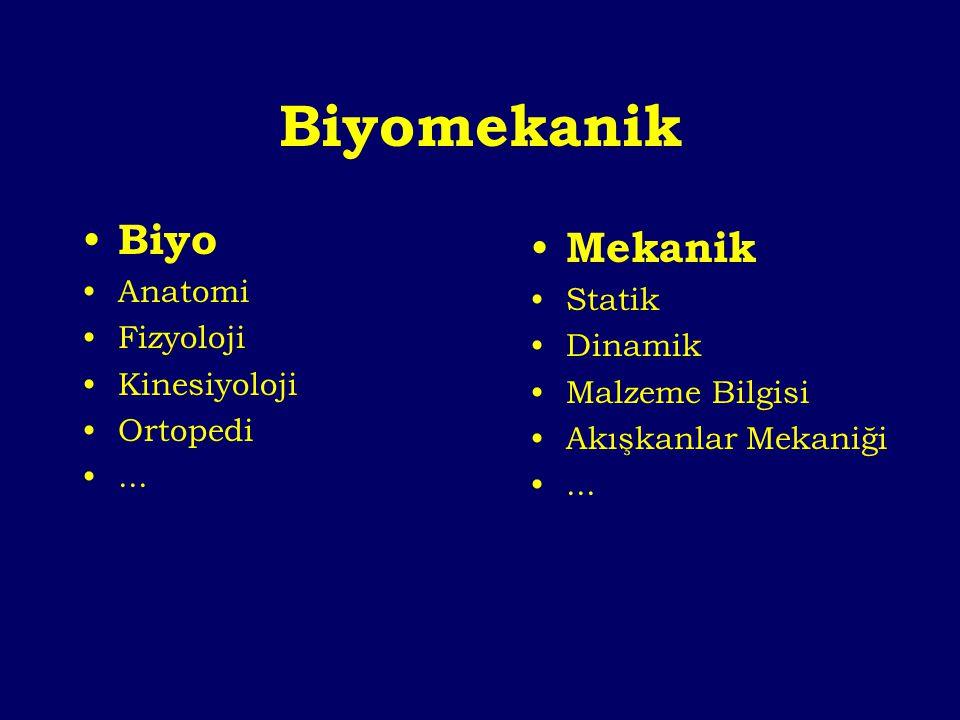 Biyomekanik Biyo Mekanik Anatomi Statik Fizyoloji Dinamik Kinesiyoloji