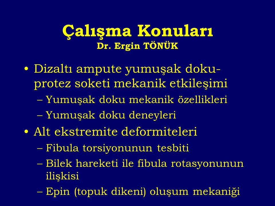 Çalışma Konuları Dr. Ergin TÖNÜK