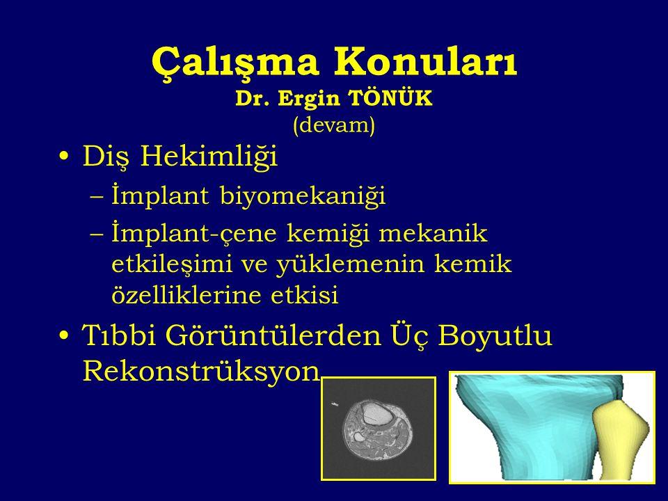 Çalışma Konuları Dr. Ergin TÖNÜK (devam)