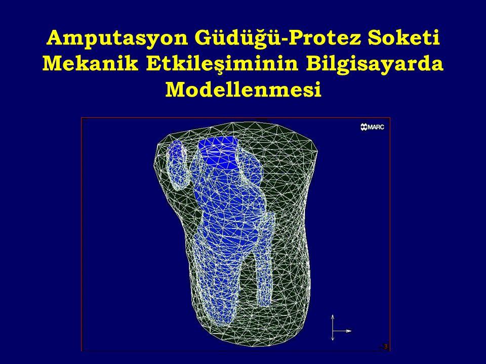 Amputasyon Güdüğü-Protez Soketi Mekanik Etkileşiminin Bilgisayarda Modellenmesi