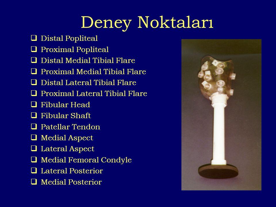 Deney Noktaları Distal Popliteal Proximal Popliteal