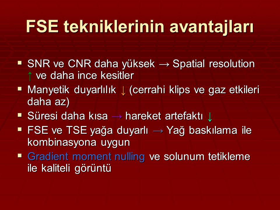 FSE tekniklerinin avantajları