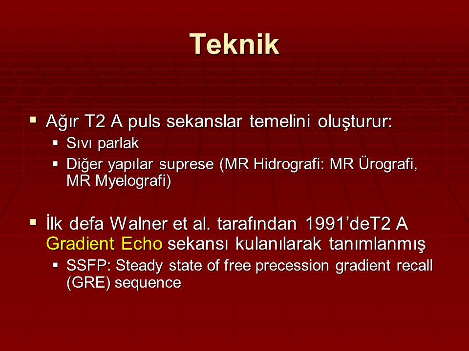 Teknik Ağır T2 A puls sekanslar temelini oluşturur: