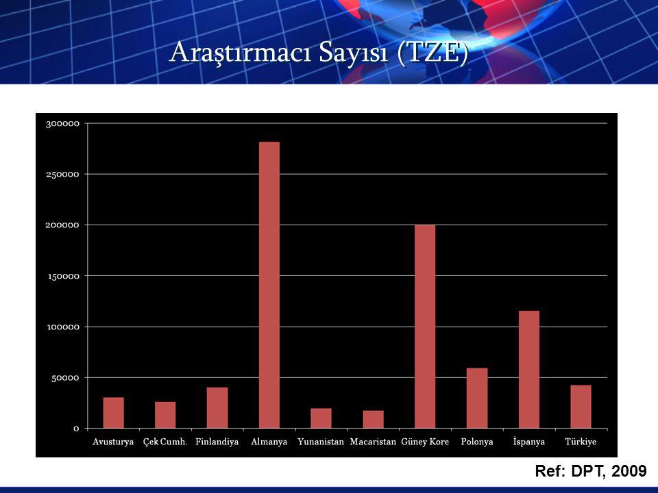 Araştırmacı Sayısı (TZE)