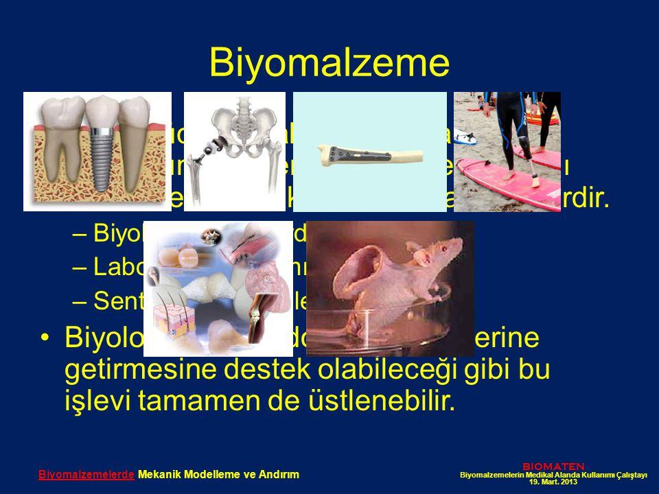 Biyomalzemelerde Mekanik Modelleme ve Andırım