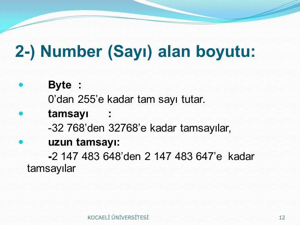 2-) Number (Sayı) alan boyutu: