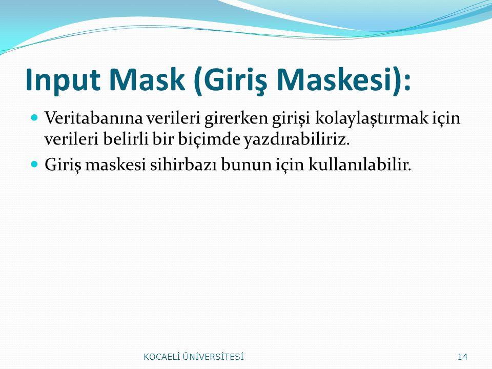 Input Mask (Giriş Maskesi):