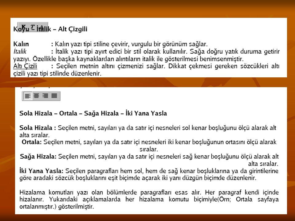 04.11.2008 Seyfullah BAŞKÖYLÜ