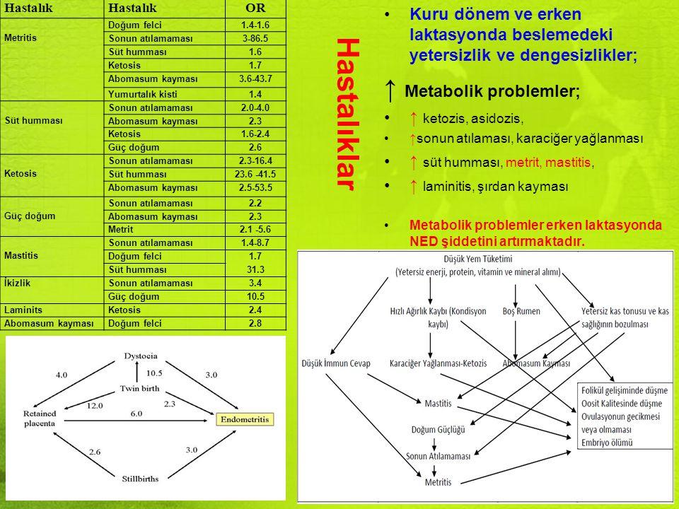 Hastalıklar ↑ Metabolik problemler;