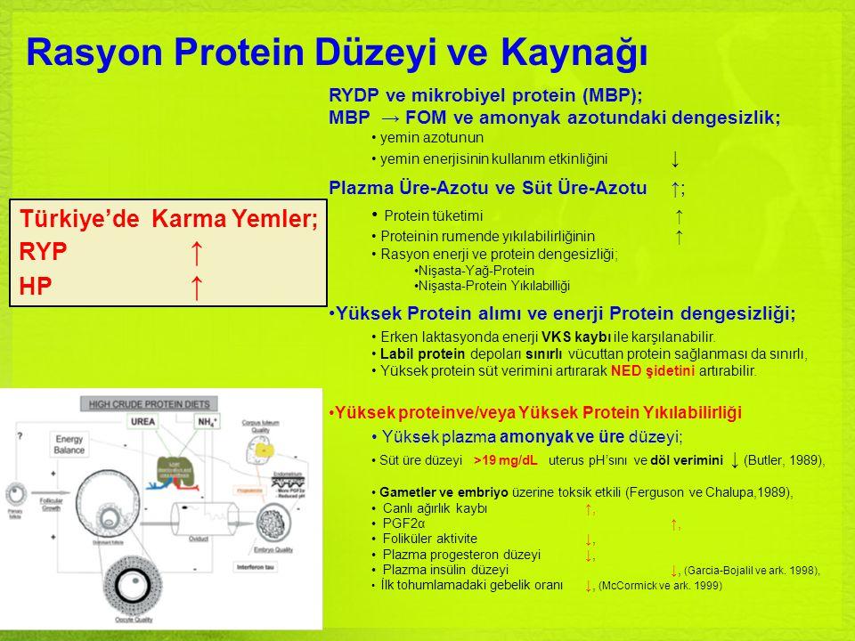 Rasyon Protein Düzeyi ve Kaynağı