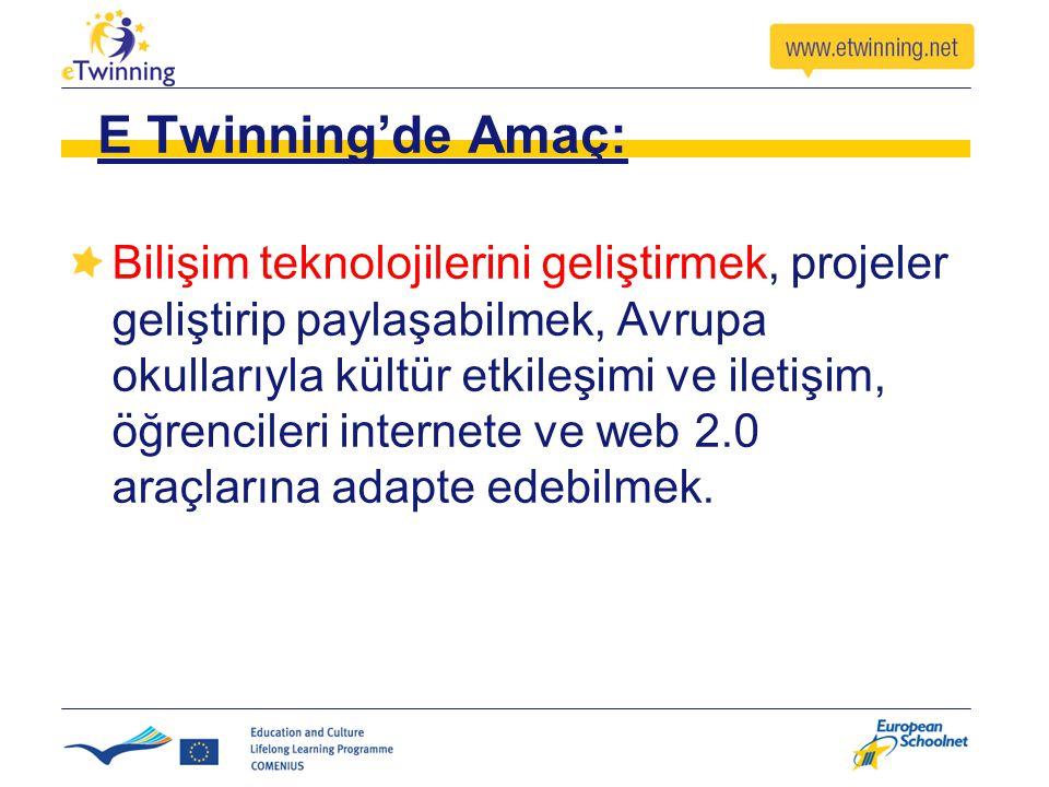 E Twinning'de Amaç: