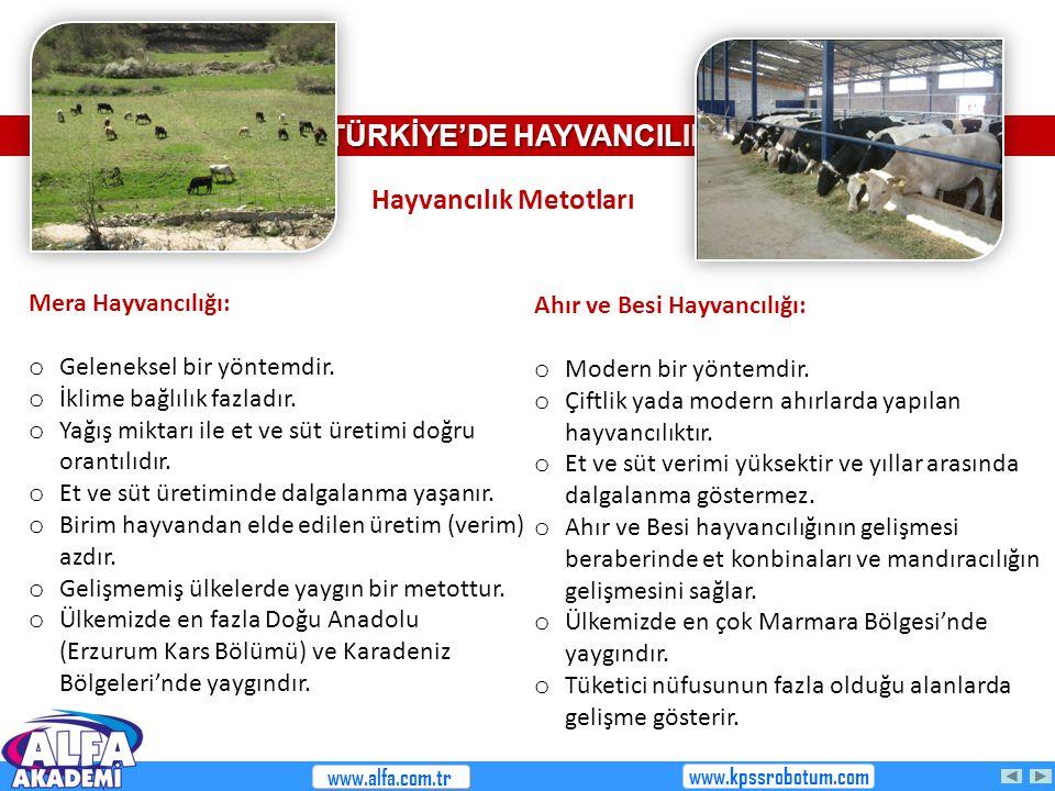 TÜRKİYE'DE HAYVANCILIK Hayvancılık Metotları