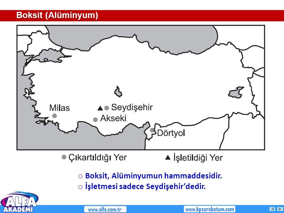 Boksit, Alüminyumun hammaddesidir. İşletmesi sadece Seydişehir'dedir.