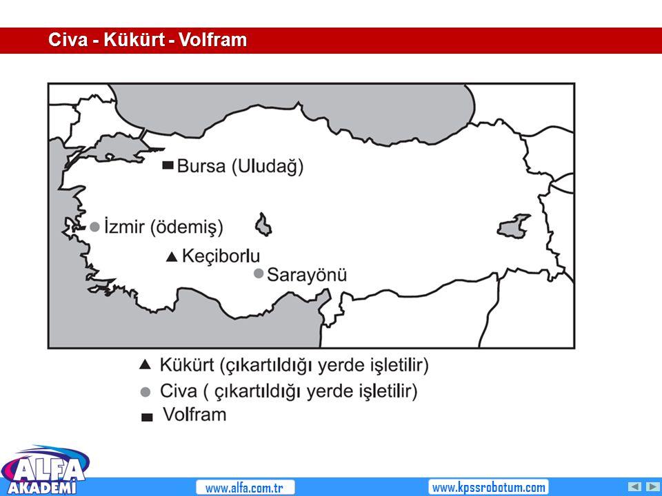 Civa - Kükürt - Volfram www.alfa.com.tr www.kpssrobotum.com