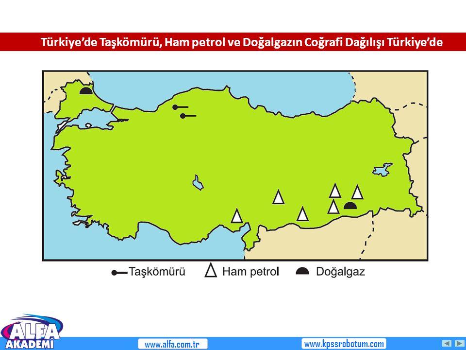 Türkiye'de Taşkömürü, Ham petrol ve Doğalgazın Coğrafi Dağılışı Türkiye'de