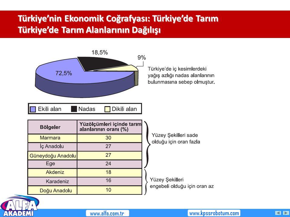 Türkiye'nin Ekonomik Coğrafyası: Türkiye'de Tarım