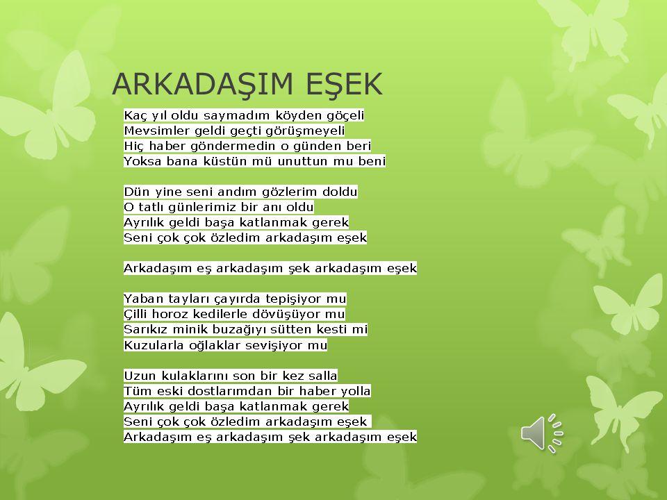 ARKADAŞIM EŞEK