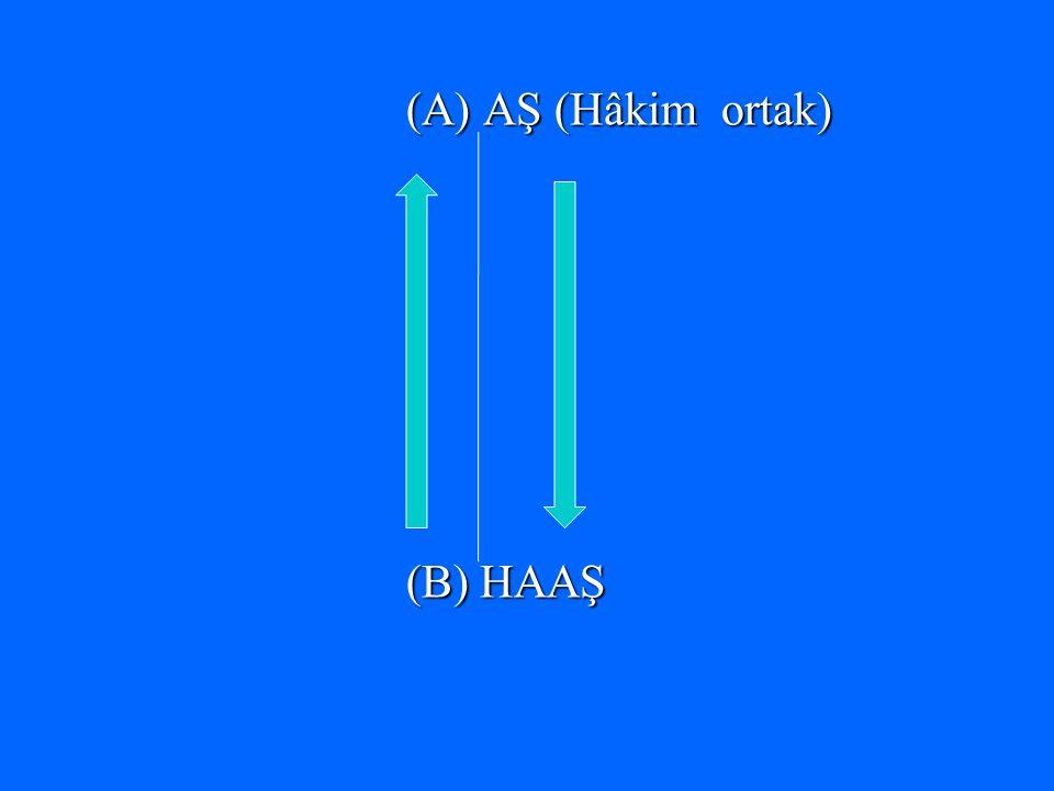 (A) AŞ (Hâkim ortak) (B) HAAŞ