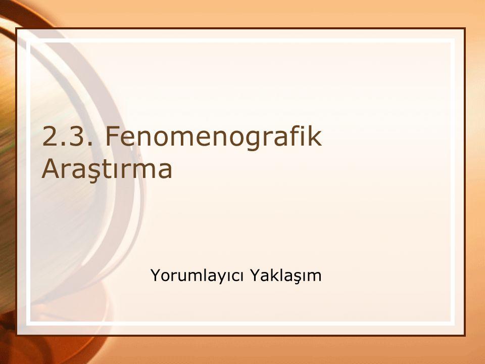 2.3. Fenomenografik Araştırma