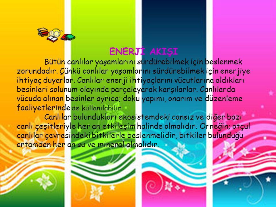 ENERJİ AKIŞI
