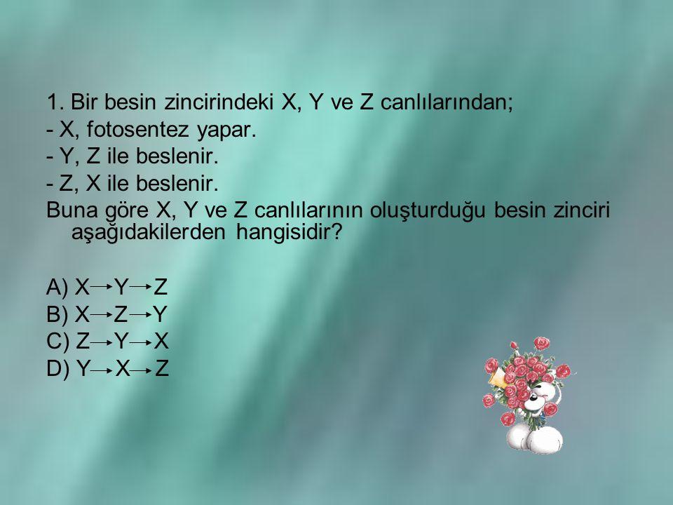 1. Bir besin zincirindeki X, Y ve Z canlılarından;