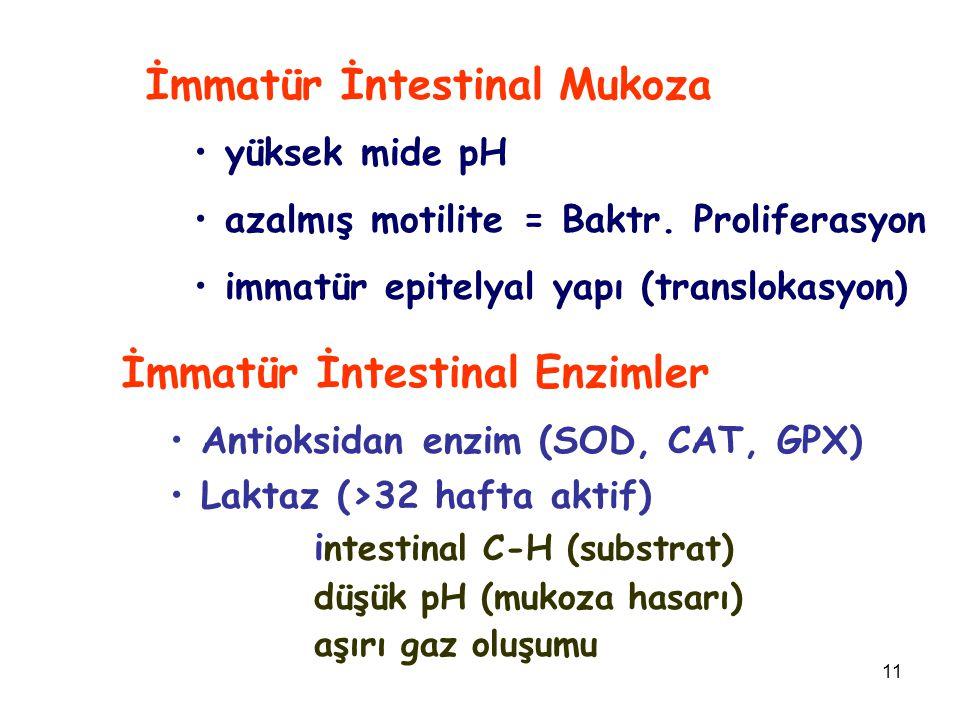 İmmatür İntestinal Mukoza