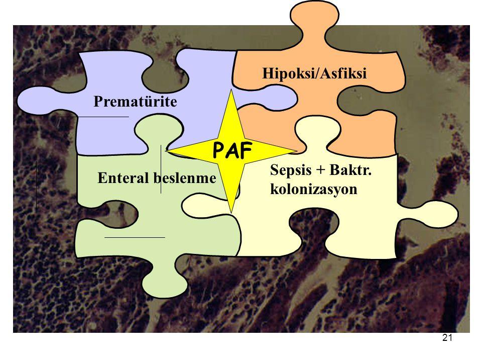 PAF Hipoksi/Asfiksi Prematürite Sepsis + Baktr. Enteral beslenme
