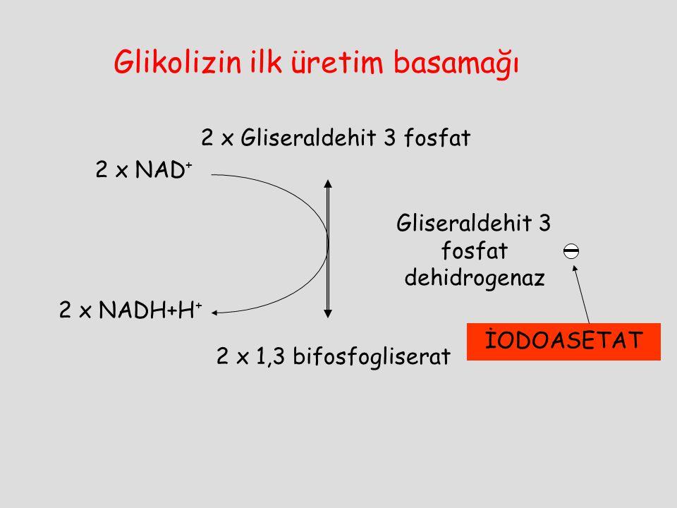 Glikolizin ilk üretim basamağı