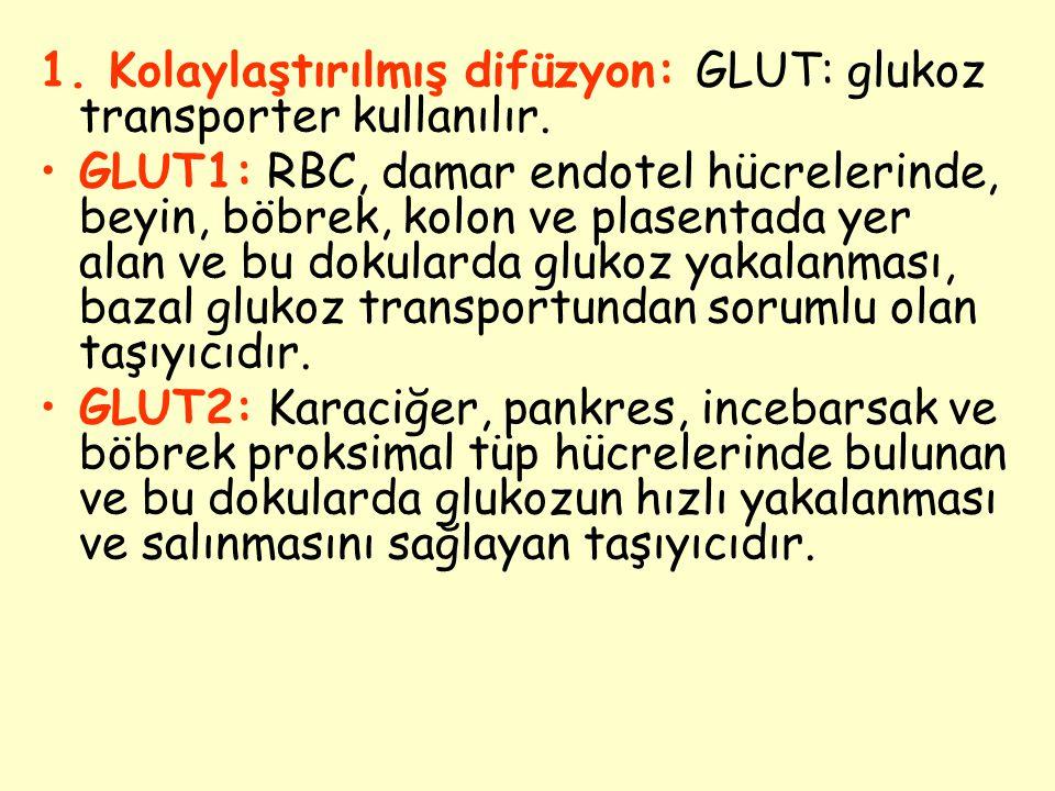 1. Kolaylaştırılmış difüzyon: GLUT: glukoz transporter kullanılır.