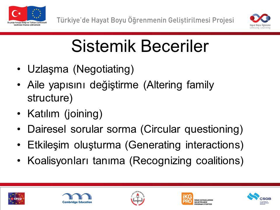 Sistemik Beceriler Uzlaşma (Negotiating)